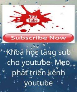 Khoá học tăng sub cho youtube